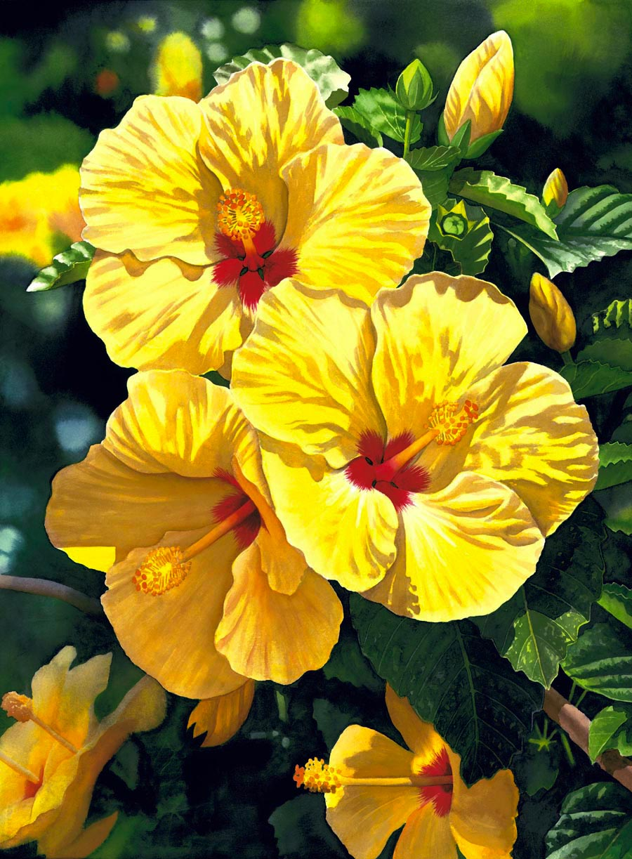Garry Palm Yellow Hibiscus