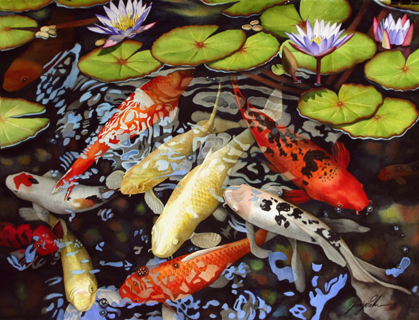 Garry Palm Koi and Water Lilies